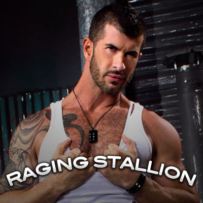 LOGOS-400X400-ragingstallion