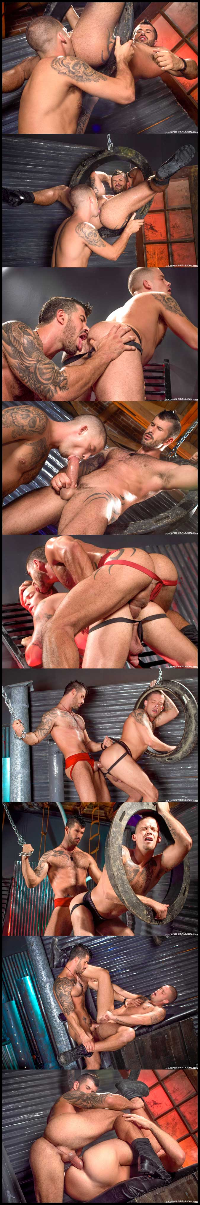 Cock-Tease-Collage